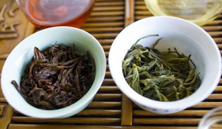 Bã trà bón cây có thực sự tốt cho cây trồng không?
